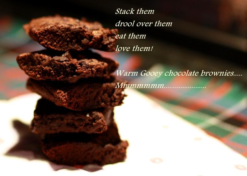 chocolate brownie, chocolate brownie recipe, cocoa brownie