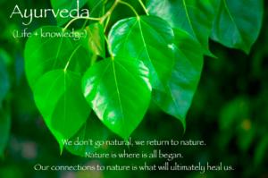 people tree leaves, detox green juice