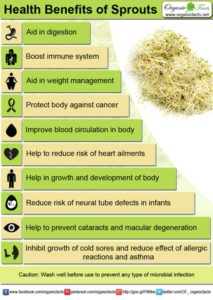Health benefits of sprouts