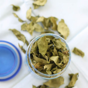 Dried Indian curry leaves in an airtight jar