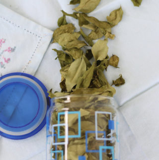 How to dry and preserve Curry Leaves