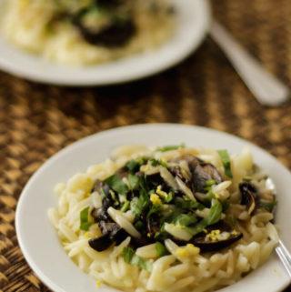 orzo pasta salad with lemon garlic and thyme mushrooms