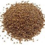 ajwain, carom seeds, celery seeds