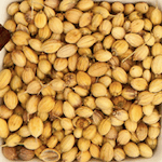 coriander seeds in hindi sabut dhaniya