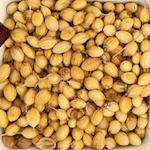 coriander seeds in hindi sabut dhaniya