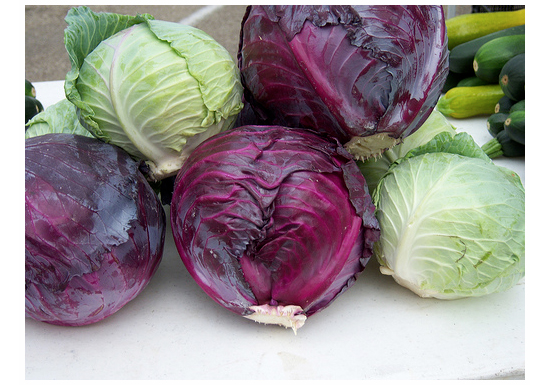 Red and Green cabbage difference