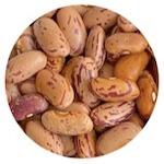 pinto beans in Hindi rajma