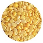 split pigeon pea lentil in Hindi arhar or toor dal